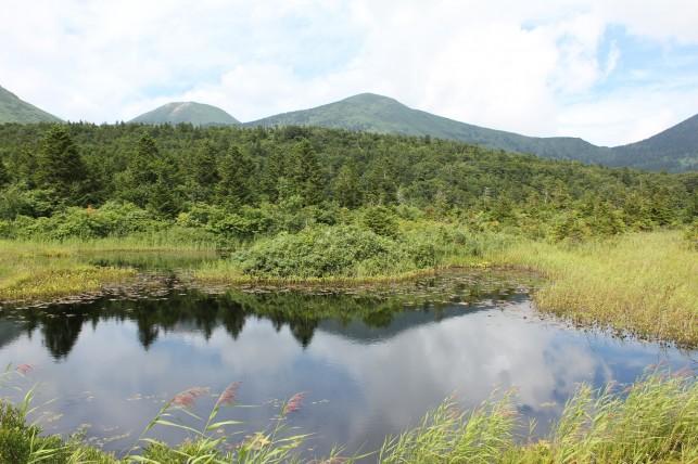 八甲田連峰と睡蓮沼の景観