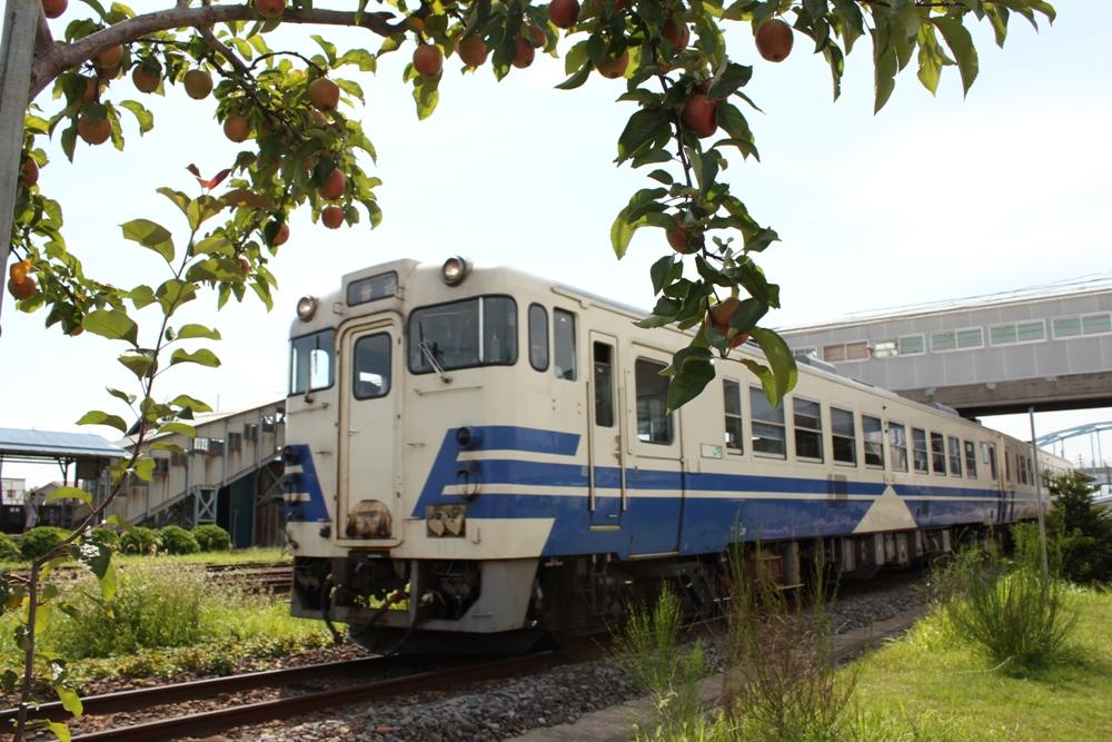 花満開で80周年おめでとう津軽鉄道イベント~五所川原市~ | 青森の魅力
