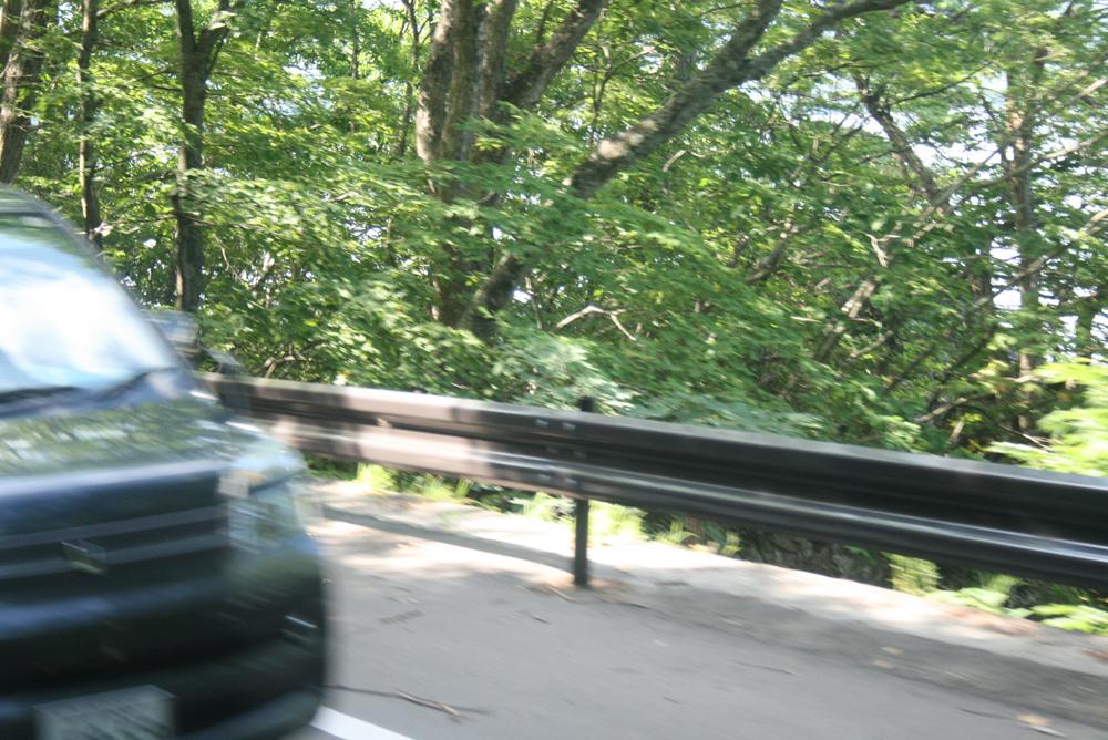 十和田湖のガードレール