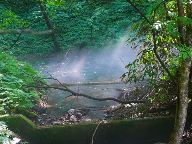 画像:青池2