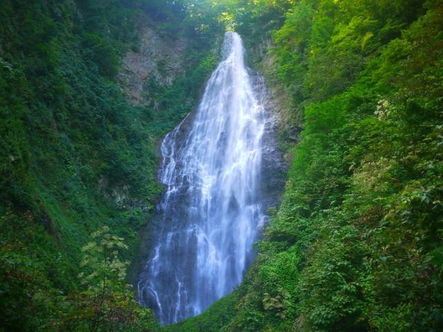 画像:くろくまの滝