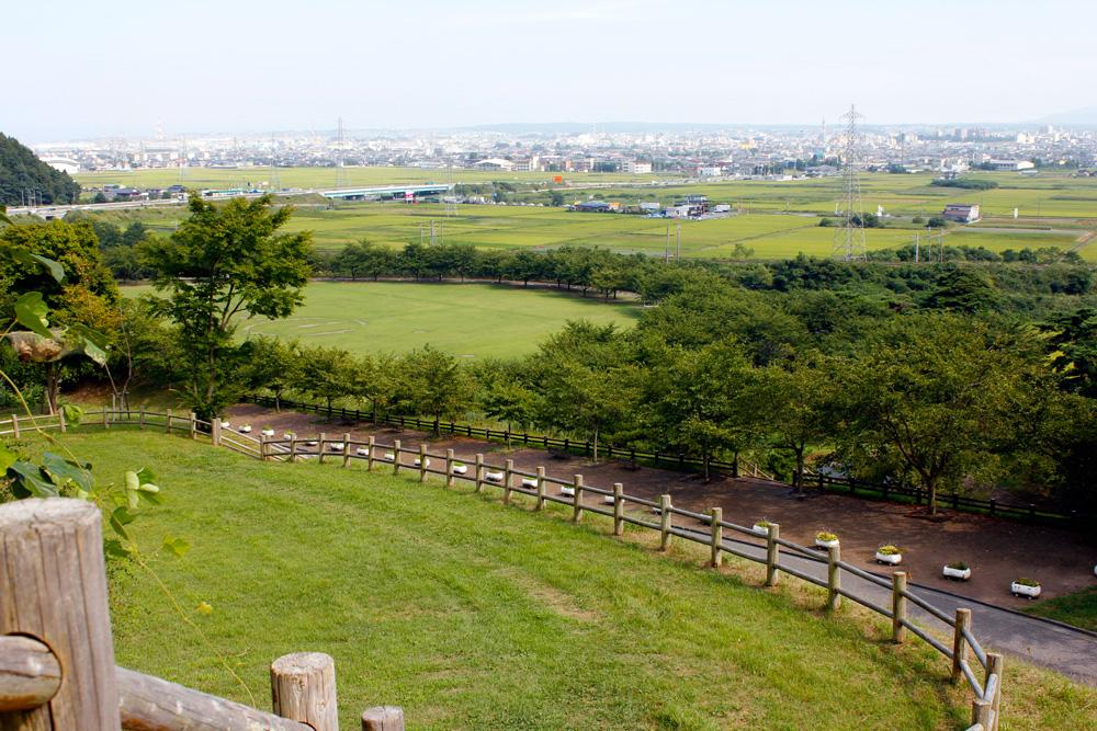 青森 風景 夏 三八 八戸市 南部山公園 並木 緑 自然 一望 芝生