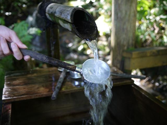 青森 津軽 青森市 風景 ブナ 白神山地 ブナ原生林の水 マイナスイオン 森林 大自然 湧き水