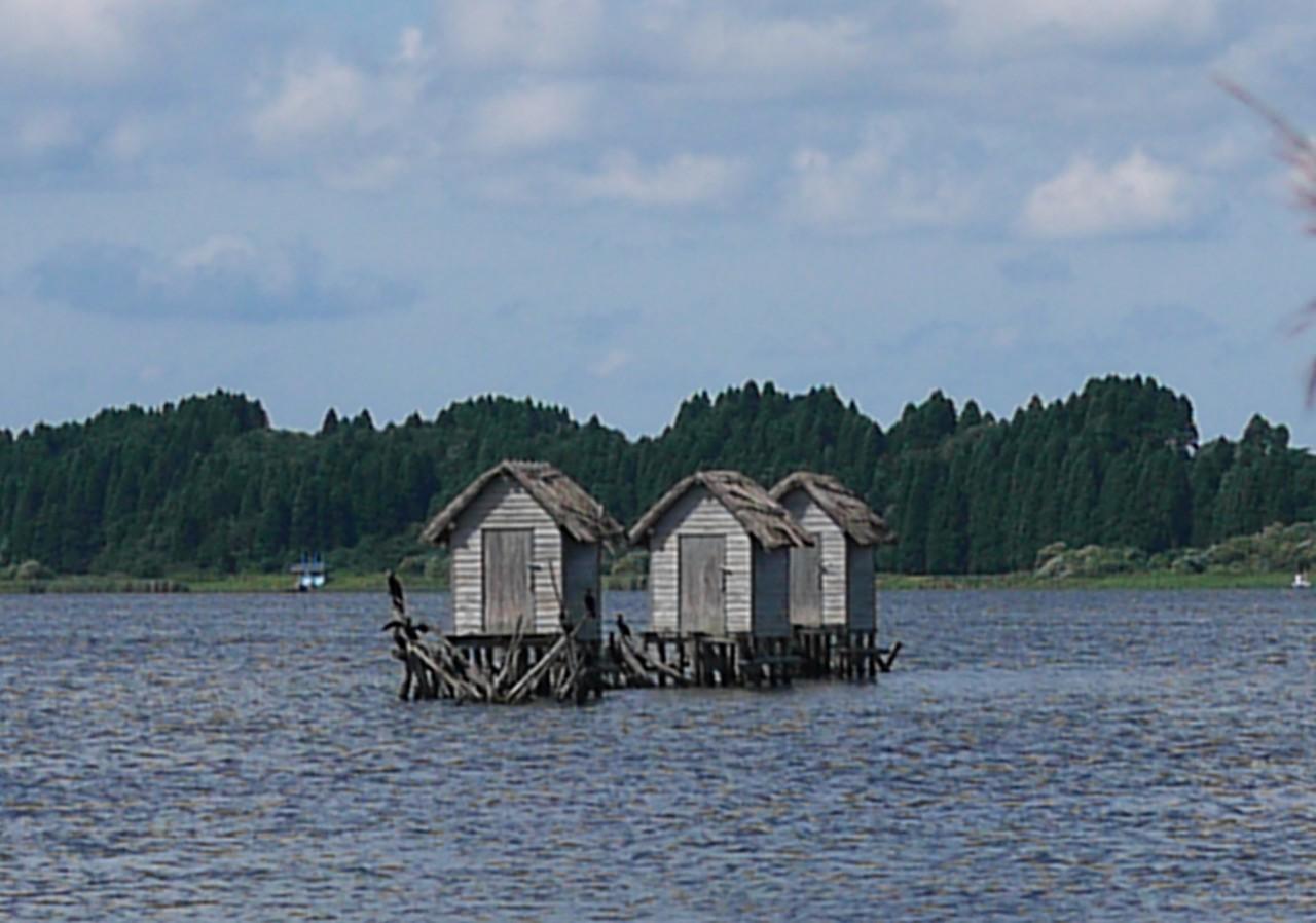 昔ながらの漁法が今は・・・