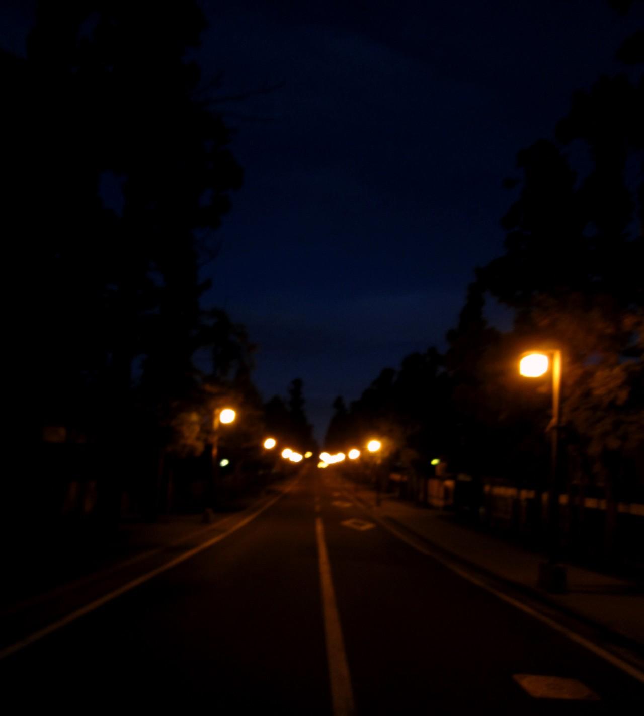 青森 弘前市 津軽 街並み 夜