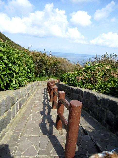 青森 風景 秋 津軽 弘前市 階段国道 自然