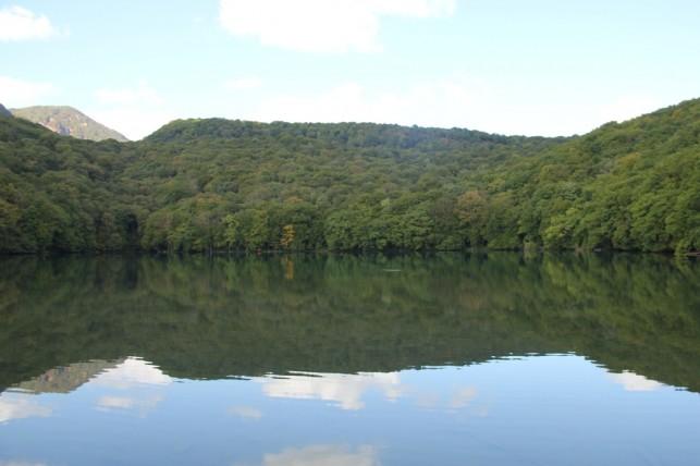 初秋の蔦沼へ:気軽に行ける深い森
