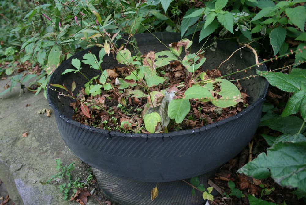 青森 風景 秋 階段国道 タイヤ 植木鉢