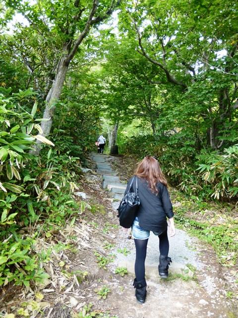 青森 風景 秋 下北 むつ市 恐山 森林 根 階段