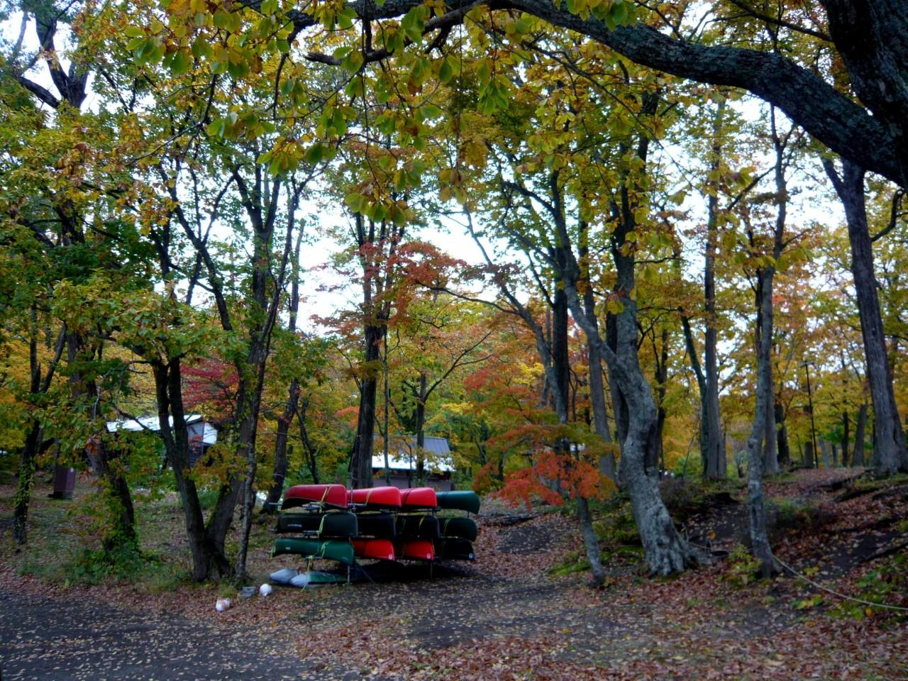 青森 風景 秋 冬 上北 十和田市 十和田湖 紅葉 ボート