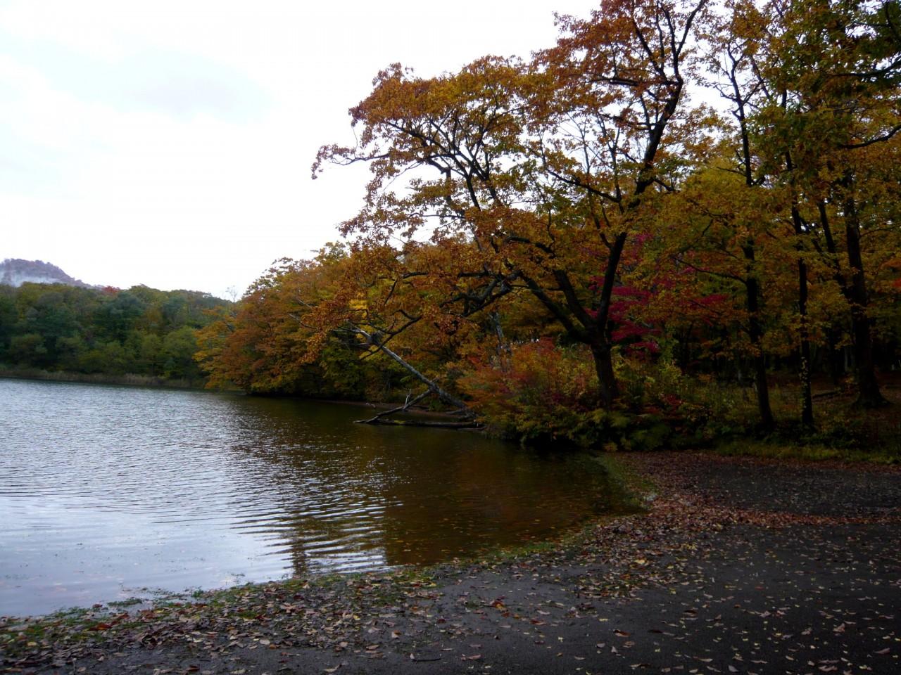 青森 風景 秋 冬 上北 十和田市 十和田湖 紅葉