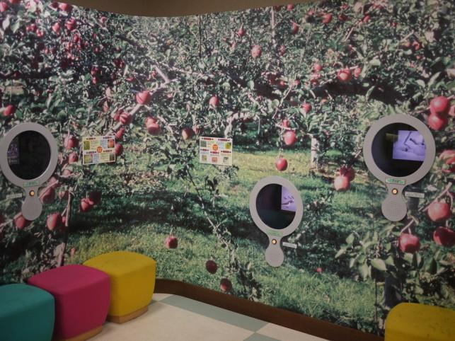 画像:りんごの家内部2