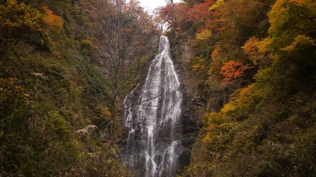 秋深く染まる場所~日本の滝百選 くろくまの滝~