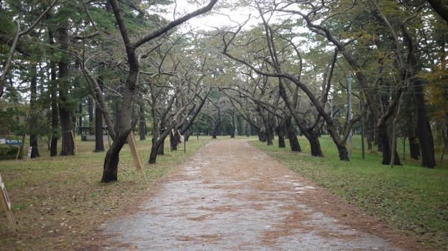画像:芦野公園3