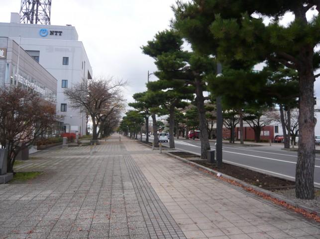 """十和田市のシンボルロード """"官庁街通り"""""""