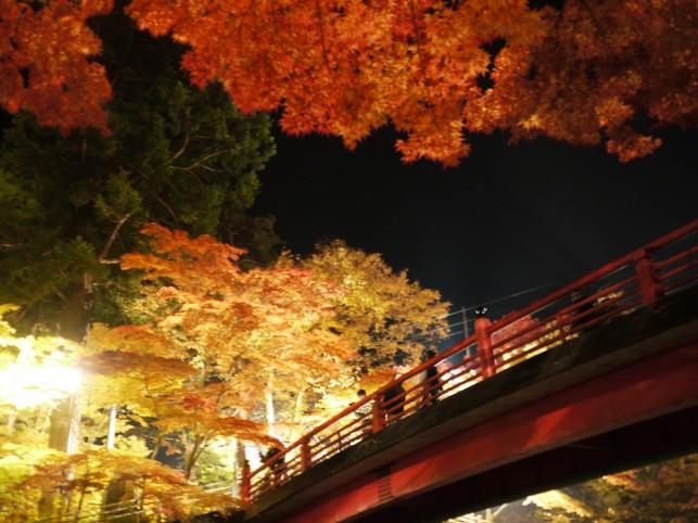 もみじ山橋