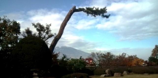 秋の藤田記念庭園と岩木山