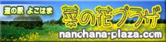 nanohanapuraza