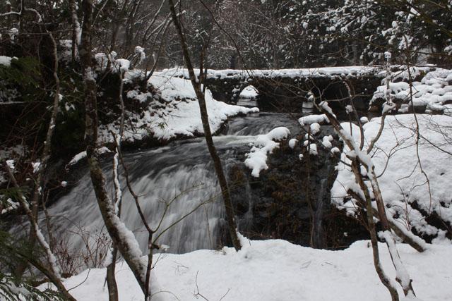 青森 風景 津軽 小泊村 中泊町 冬 七つ滝 雪 森林