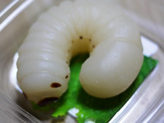 食べれられます『かぶとむしようちゅうグミ』