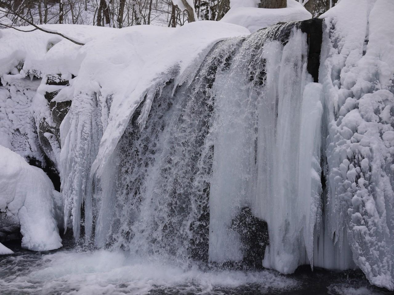青森 上北 十和田市 風景 冬 雪 木 樹 銚子大滝
