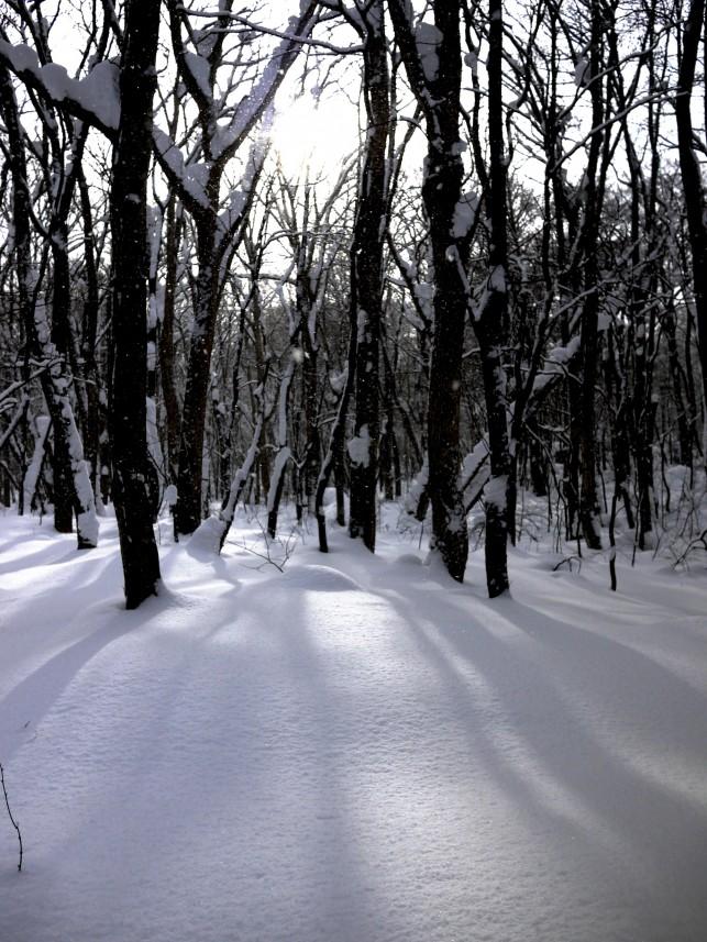 スノーランブリング~十和田湖~