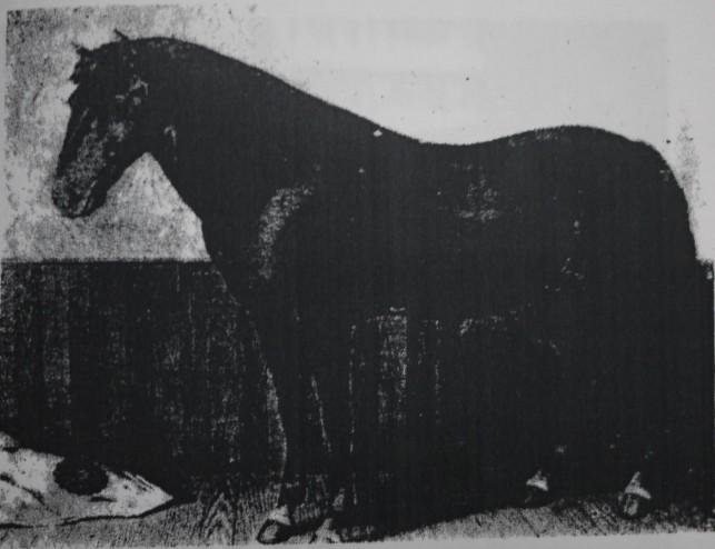 南部馬の歴史5