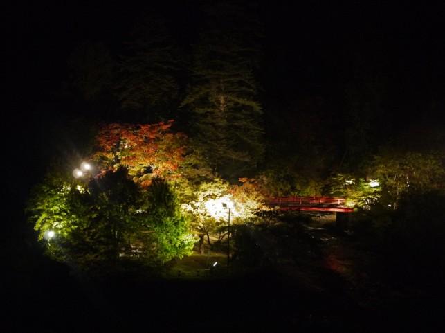 夜でも魅せる・・・空に映える数百本のモミジ達in黒石☆