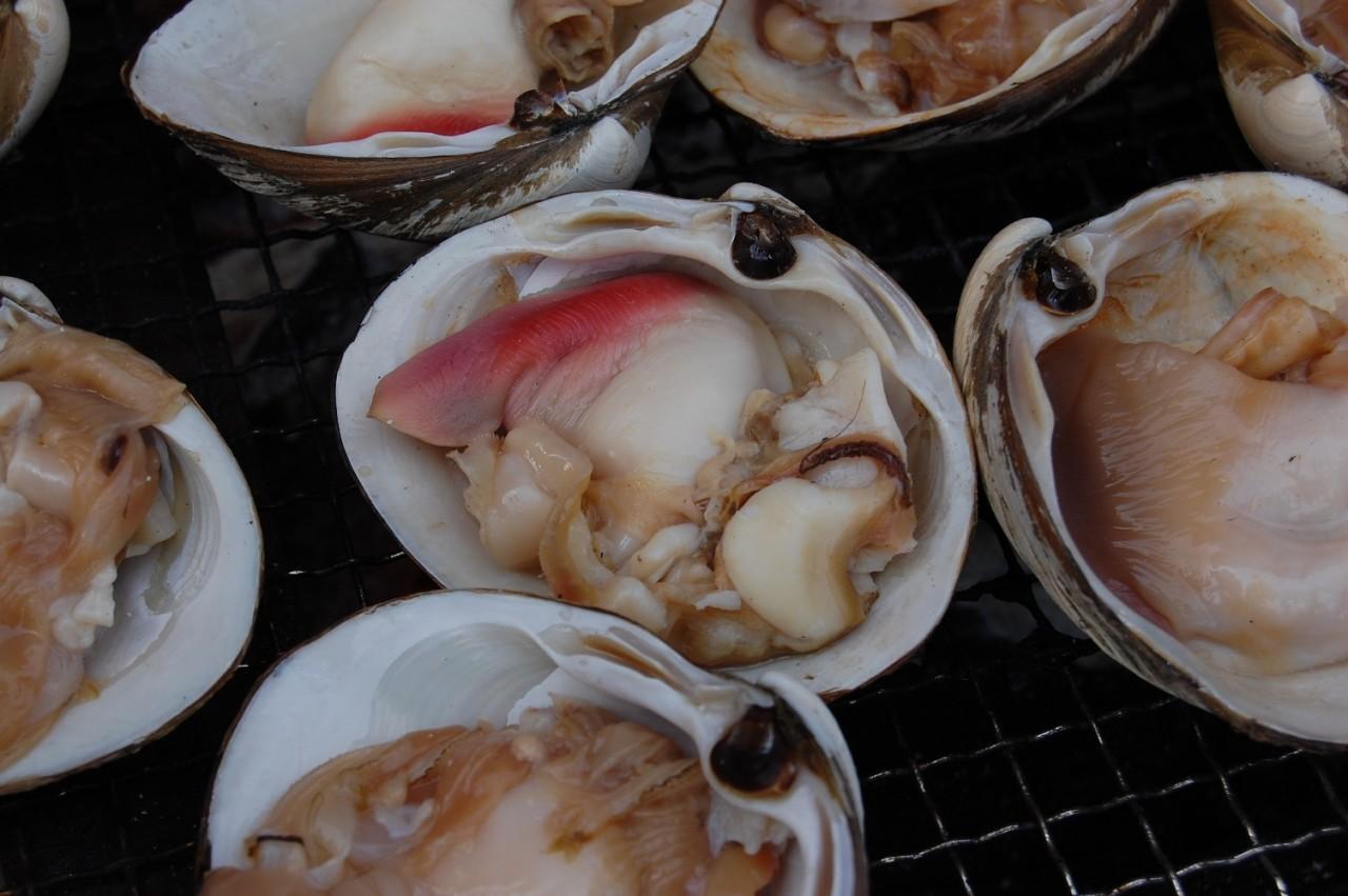 青森 食べ物 三八 三沢 ほっき貝