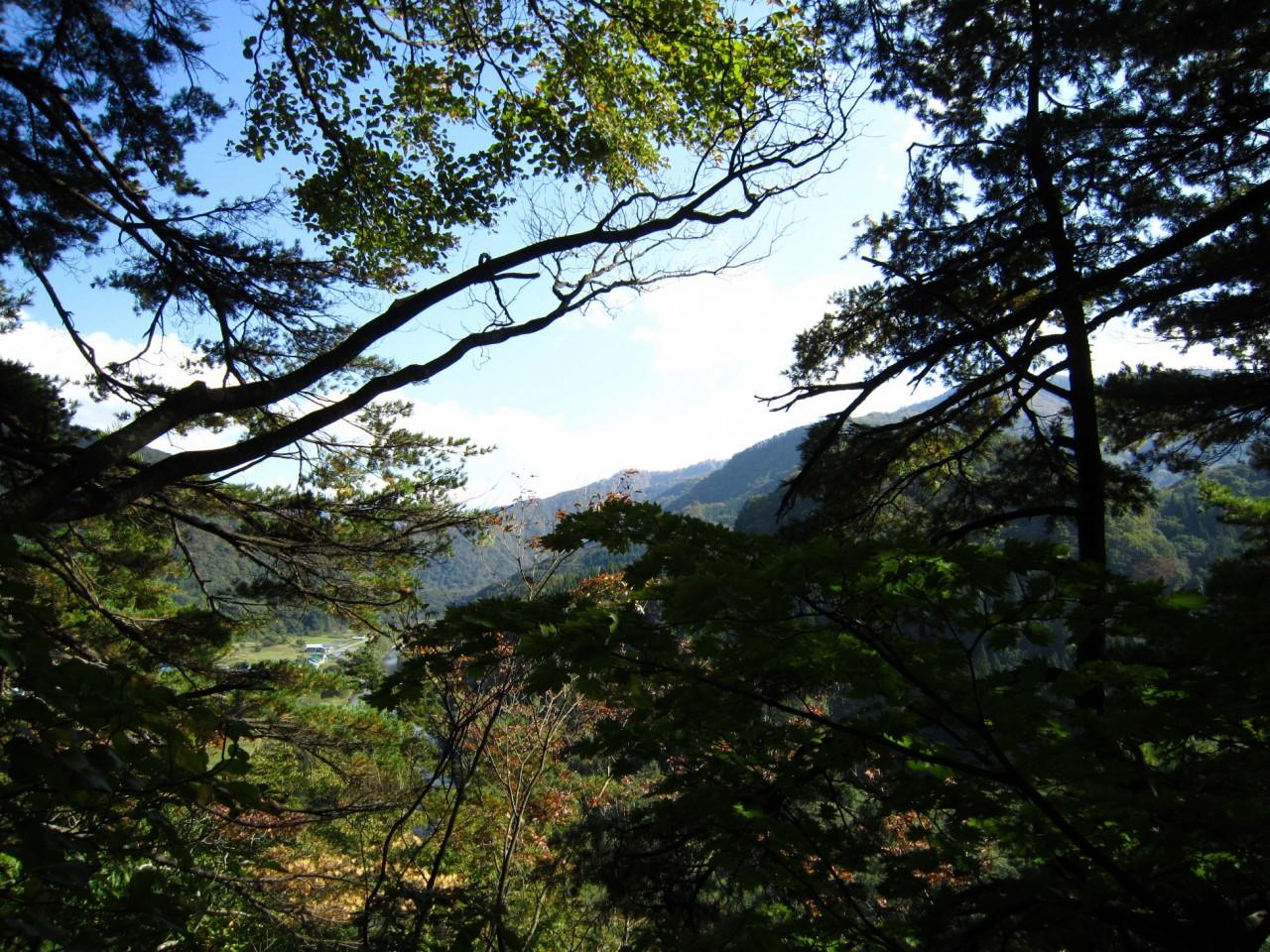 青森 津軽 深浦町 風景 冬 昼 樹 岩 森 木 山