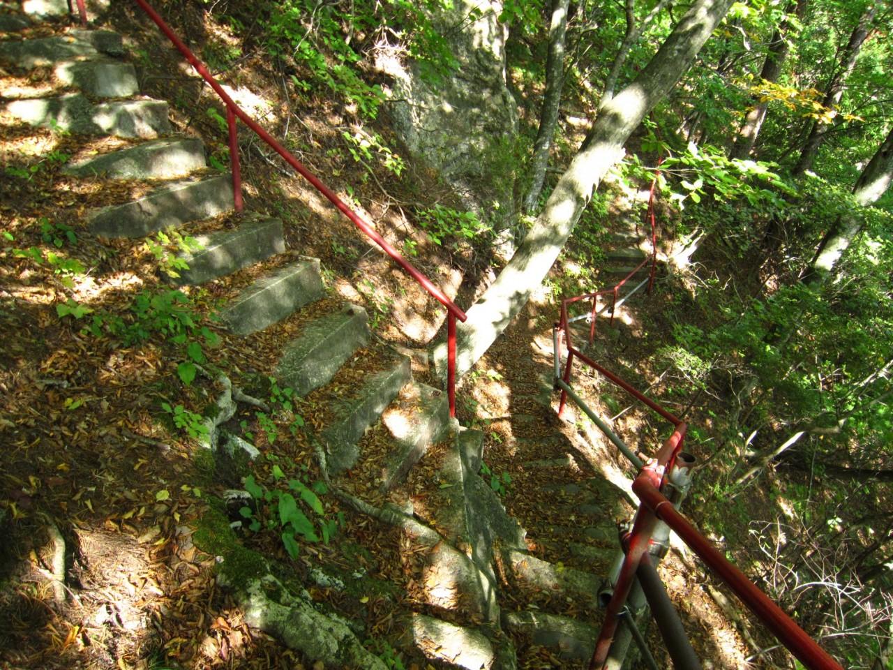 青森 津軽 深浦町 風景 冬 昼 階段 木 樹 森の中