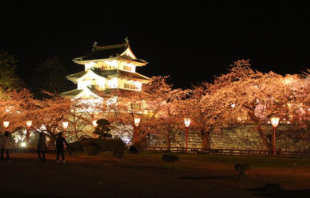 弘前城と夜桜