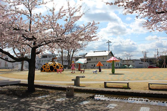 草間彌生アートと桜