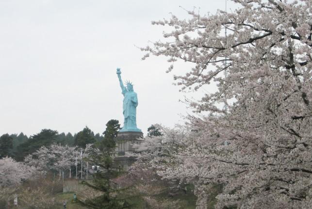 ももちゃんと桜