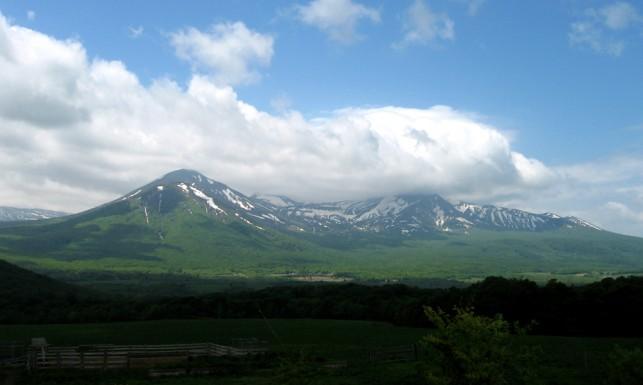 新緑まぶしい山にはまだ雪が。
