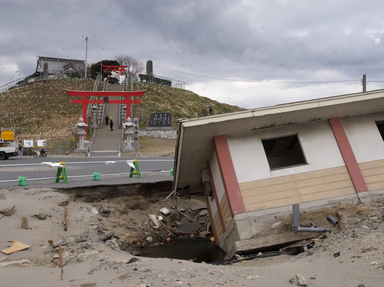 ウミネコの繁殖地として有名な蕪島前のトイレ棟が陥没