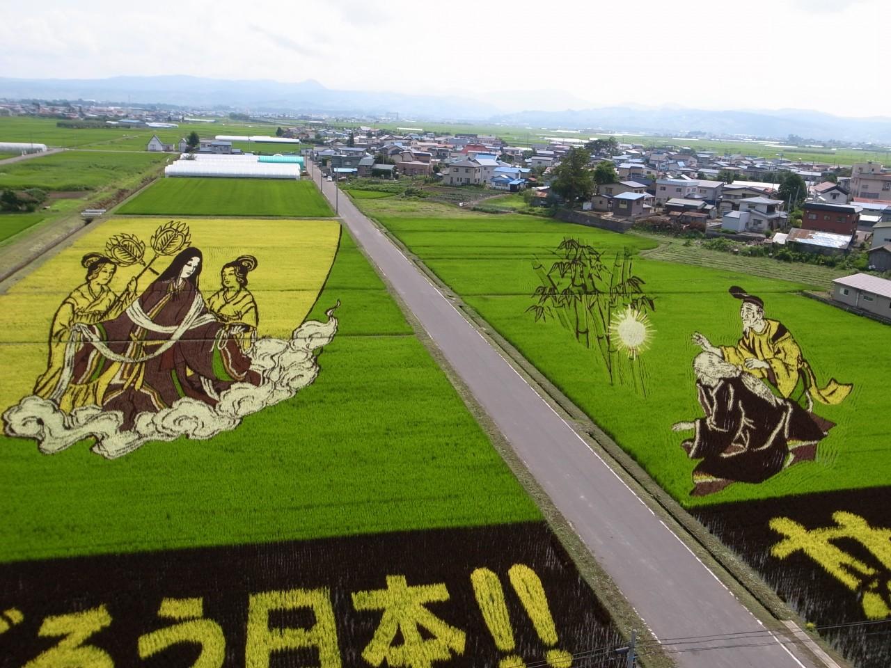 2011年の田んぼアートは竹取物語!