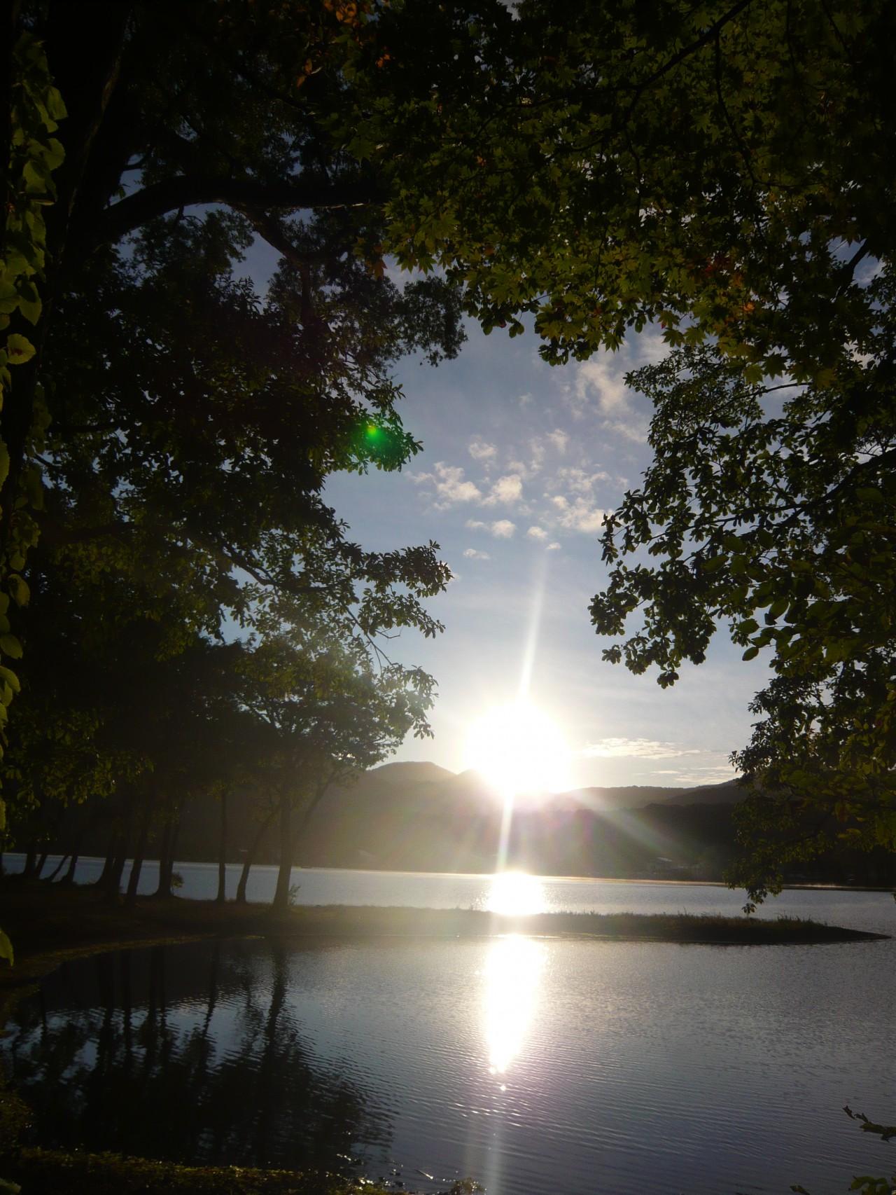 青森 十和田市 上北 秋 十和田湖 日の出 朝日 自然 早朝 木漏れ日 風景