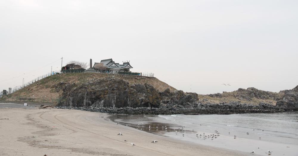 青森 風景 三八 八戸 蕪島 ウミネコ 砂浜辺 波打ち際