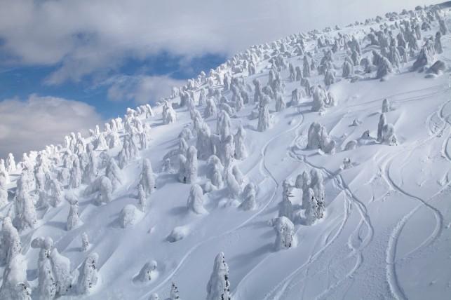 八甲田の樹氷でスノーボード