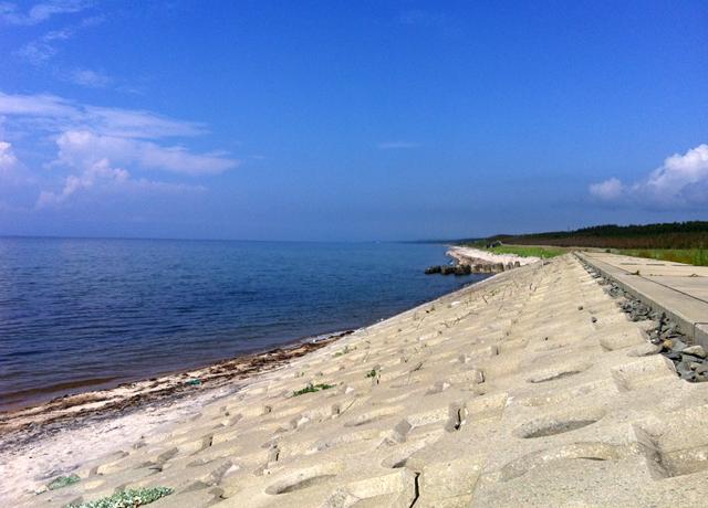 夏の日、とある海