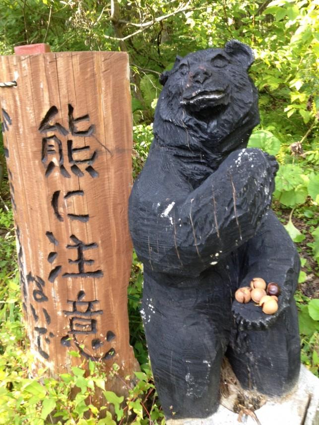 十和田市、日本一のブナ巨木