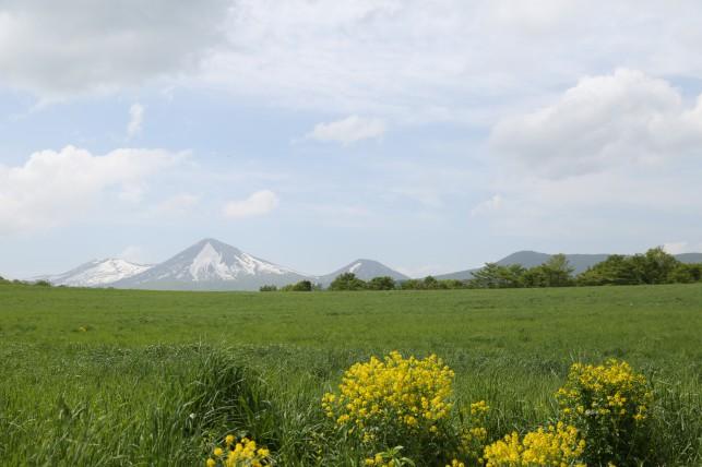 八甲田の草原