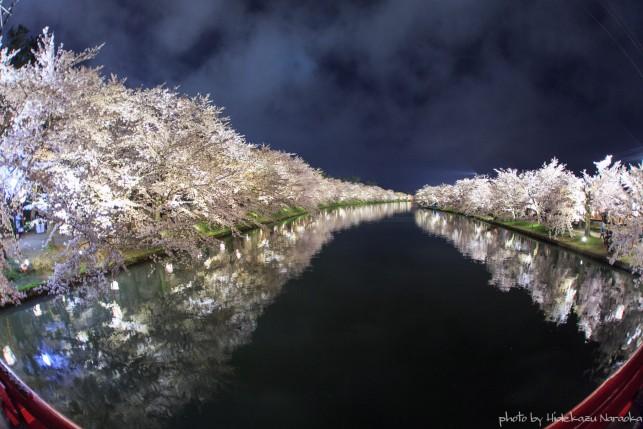 青森の桜 フォトコンテスト 準大賞「桜花」
