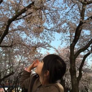 桜に触れて♡