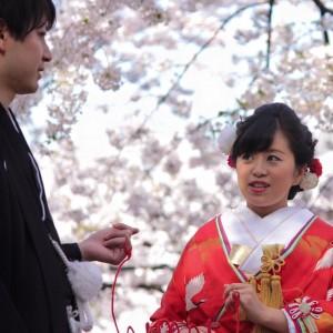 桜色の花嫁・花婿