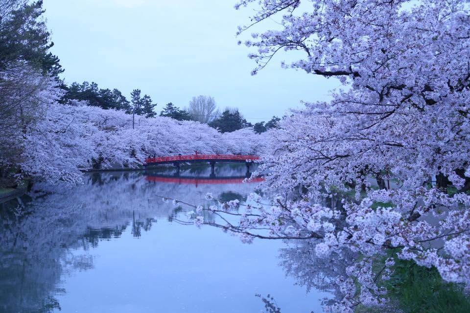 朝もやの中の 春陽橋