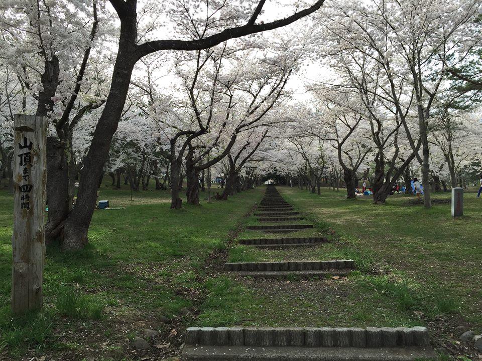 桜道(おうどう)