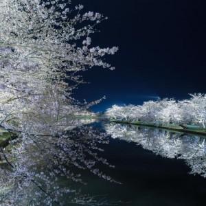 弘前公園西濠夜景