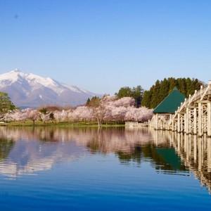 桜と津軽富士見湖